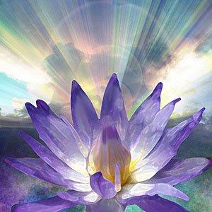 Spiritual-Garden